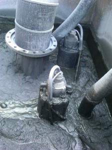 Polaris Pumps in Tank