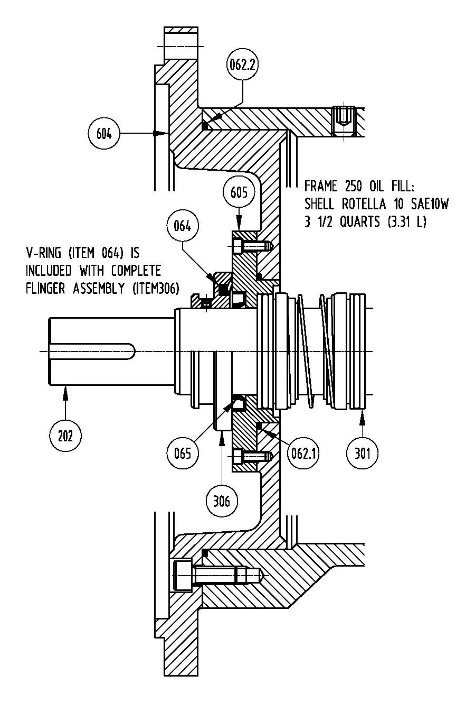 Frame 250TY ISS Motor
